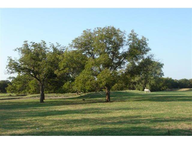 One of Granbury Horse Homes for Sale