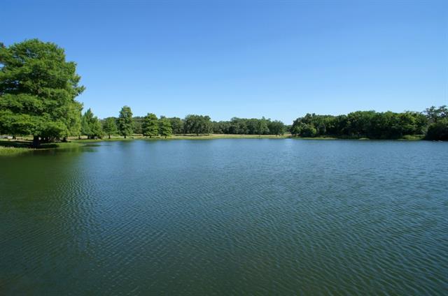 Real Estate for Sale, ListingId: 31530516, Westlake,TX76262