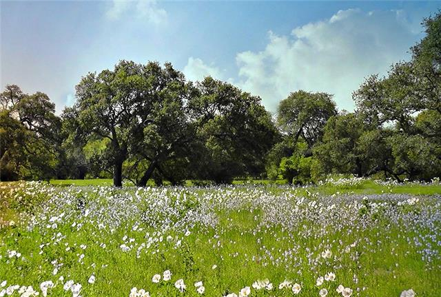 565 County Road 1861, Chico, TX 76431