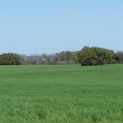 303 acres by Dublin, Texas for sale