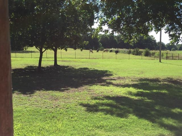 24.1 acres Celina, TX