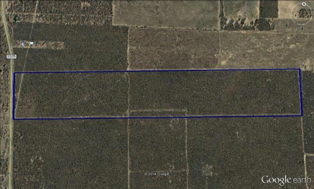 Tbd F.M. 3326 Hawley, TX 79525