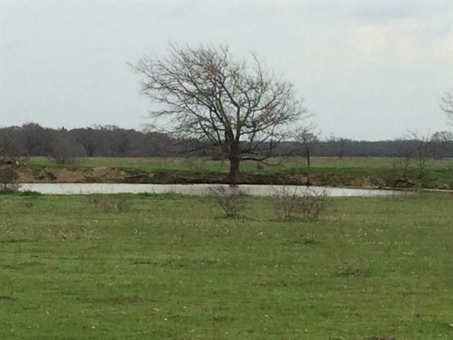 369.81 acres Wills Point, TX