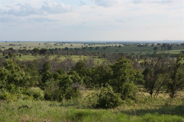 Real Estate for Sale, ListingId: 33310839, Jacksboro,TX76458