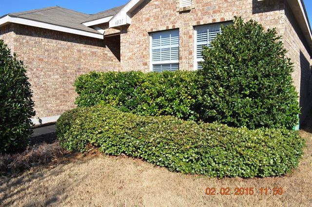 Rental Homes for Rent, ListingId:33389473, location: 6021 Marsh Rail Drive Denton 76208