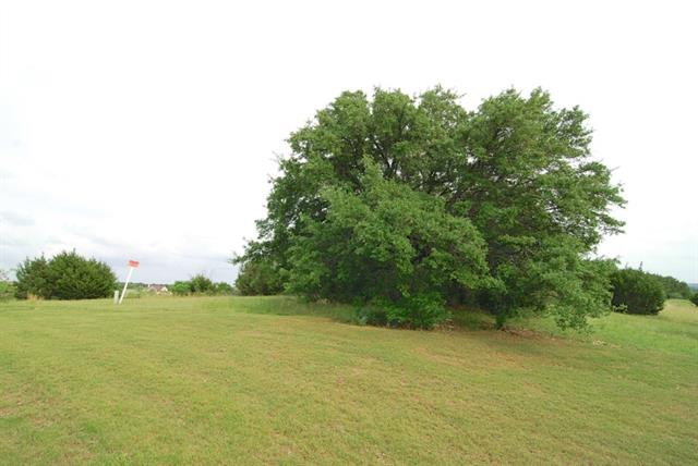 Real Estate for Sale, ListingId: 33399151, Granbury,TX76049