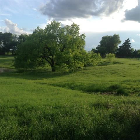 Image of Acreage for Sale near Ferris, Texas, in Dallas county: 97.59 acres