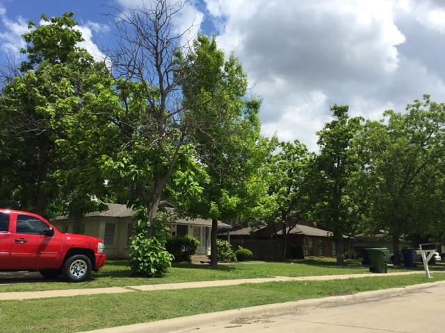 Rental Homes for Rent, ListingId:33501212, location: 1817 Randolph Drive Garland 75041