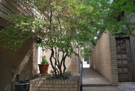 Rental Homes for Rent, ListingId:33510397, location: 3610 Routh Street Dallas 75219