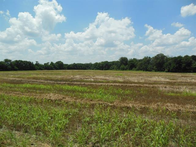 Real Estate for Sale, ListingId: 34048585, Bonham,TX75418