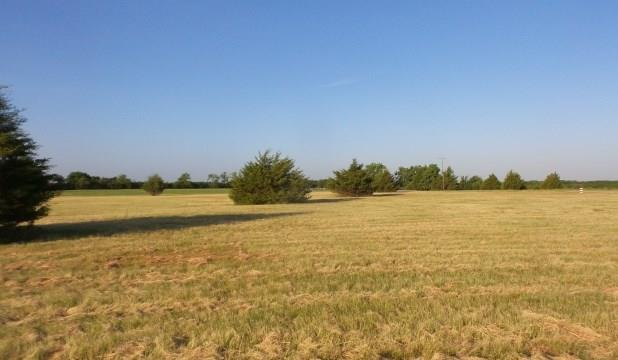 Real Estate for Sale, ListingId: 34477260, Blue Ridge,TX75424