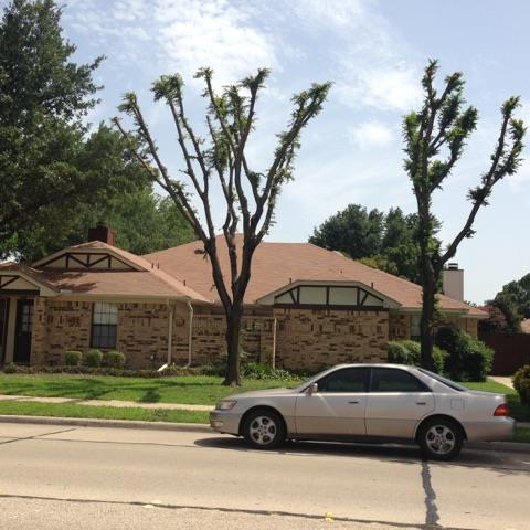 Rental Homes for Rent, ListingId:34448993, location: 509 Parkway Boulevard Coppell 75019
