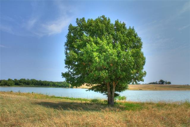 301.98 acres Celina, TX