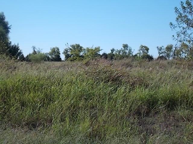 Real Estate for Sale, ListingId: 35666672, Caddo Mills,TX75135