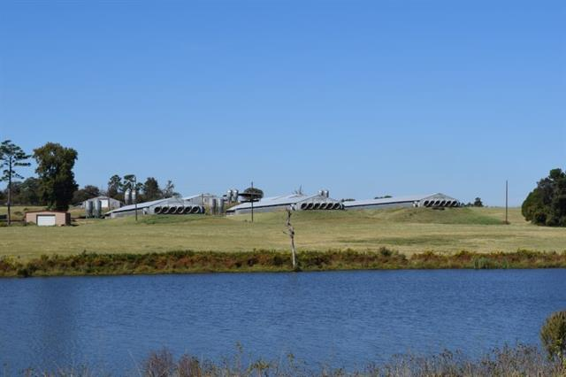 Real Estate for Sale, ListingId: 36118628, Winnsboro,TX75494