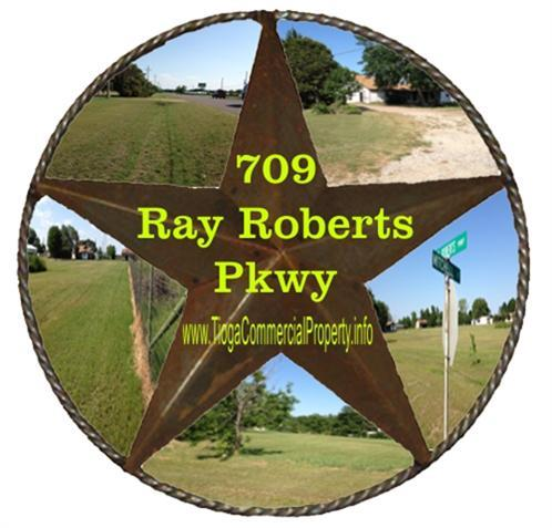 709 N Ray Roberts Pkwy, Tioga, TX 76271