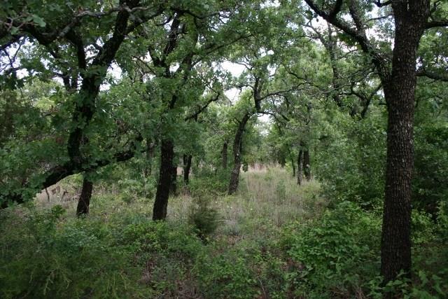 H5 Stagecoach Trail Gordon, TX 76453