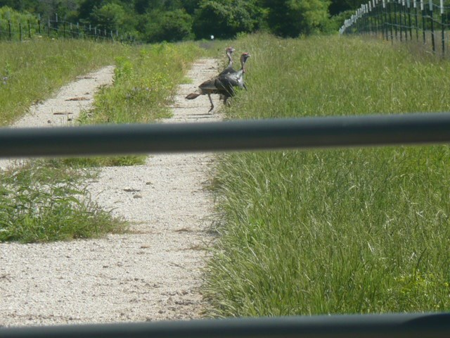 4580 Bear Creek Road - photo 19