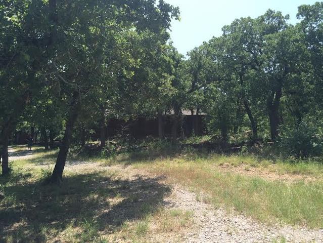 118 Poe Prairie Rd, Millsap, TX 76066