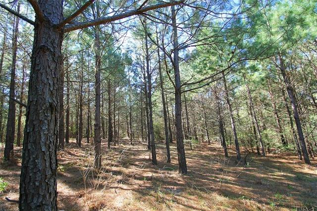 Image of Acreage for Sale near Winnsboro, Texas, in Wood County: 232.47 acres