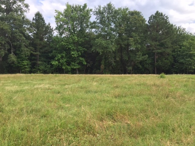 Image of Acreage for Sale near Laneville, Texas, in Rusk County: 615 acres