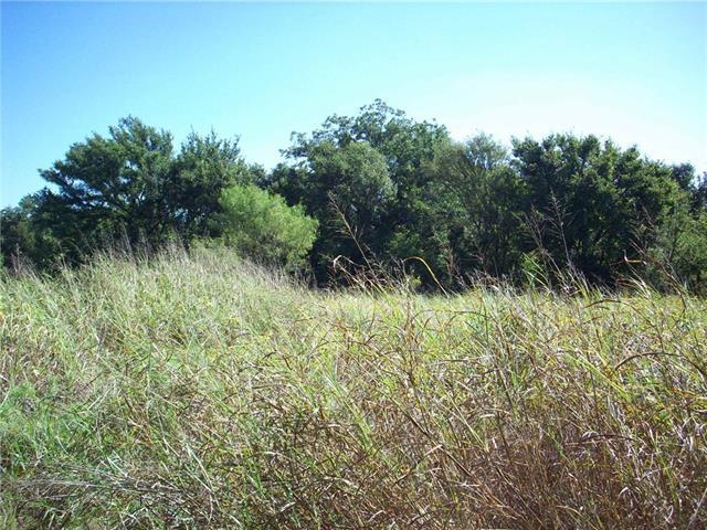 1343 Wilson Bend Rd, Millsap, TX 76066