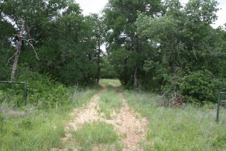 1191 Prickly Pear Trail Gordon, TX 76453
