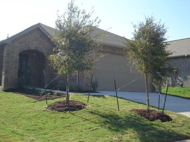 Photo of 2804 Houston Wood Drive  Fort Worth  TX