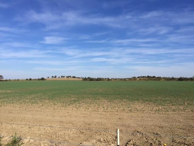 000 County Rd 1017 Joshua, TX 76058
