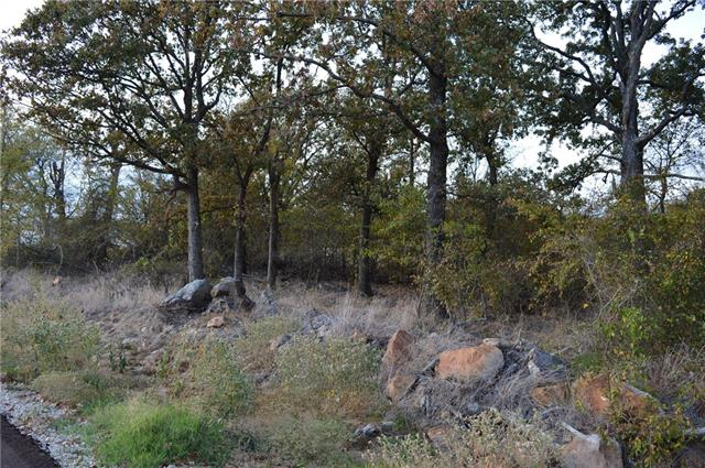 Lot 46 County Road 2310 Sulphur Springs, TX 75482