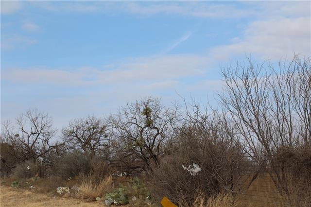 20+ Ac Fm 600 & Jolly Rogers Abilene, TX 79601