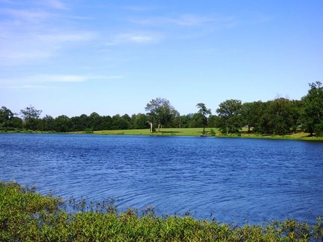 Property in lake cypress springs lake bob sandlin mt for Lake bob sandlin fishing report