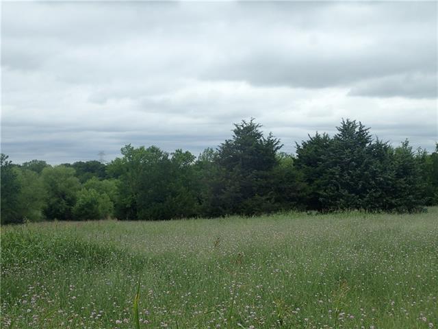 Photo of 14160 County Road 580  Blue Ridge  TX