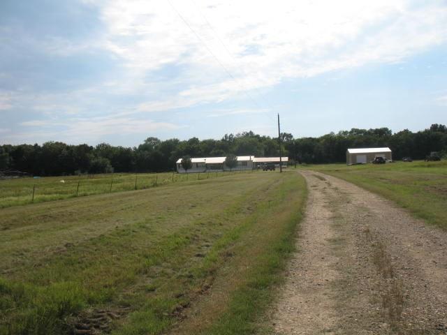 Photo of 1223 CR 3569 WS  Sulphur Bluff  TX
