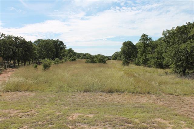 263 Creek Meadow Court Lipan, TX 76462
