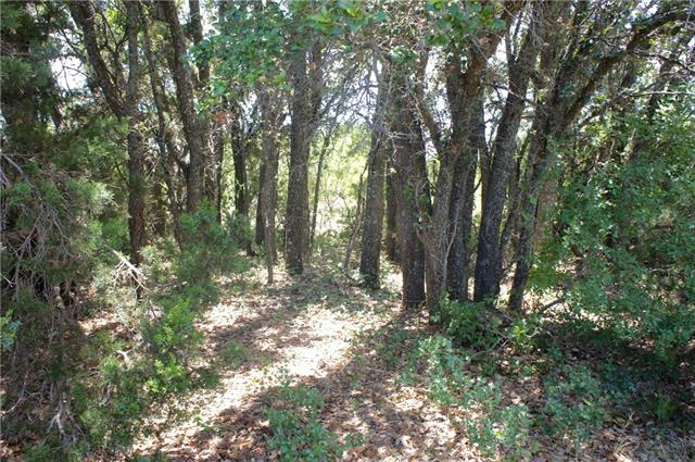 Lot 3 CR-256 Santa Anna, TX 76878
