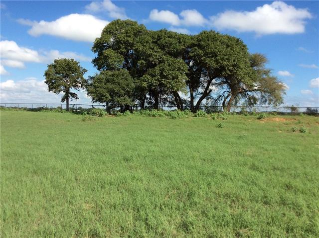 301 Double Tree Lane Lipan, TX 76462