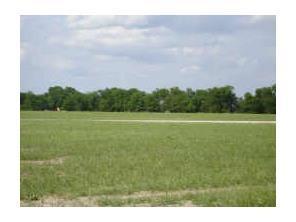 Tbd Meadow Circle Lone Oak, TX 75453