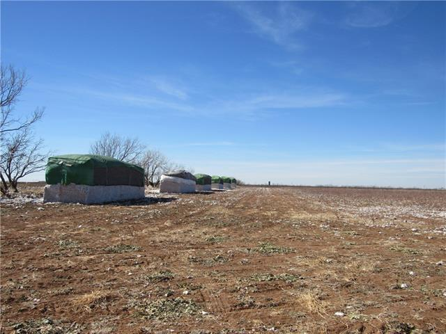 Tbd County Road 297 Anson, TX 79501