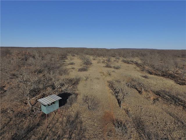 860 Ac FM 2190 Jacksboro, TX 76458