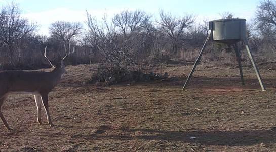 0 FM 367 Iowa Park, TX 76367