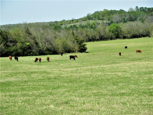 Tbd County Rd 4715 Leonard, TX 75452