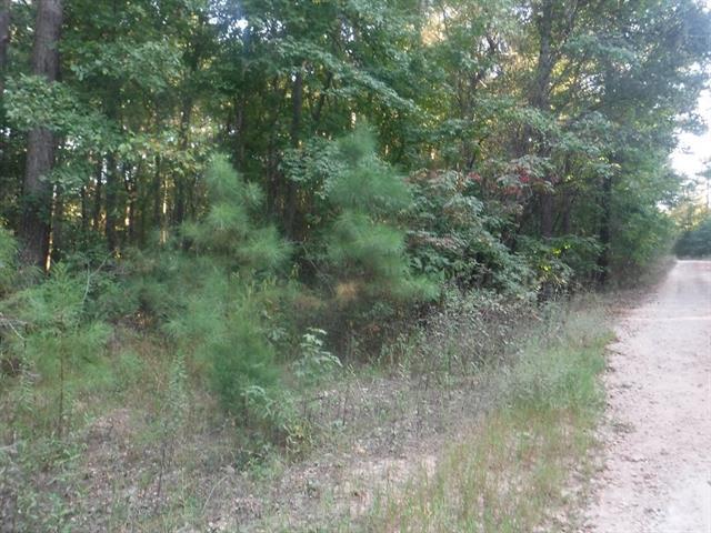 0 Ash Ridge Trail Broken Bow, OK 74728