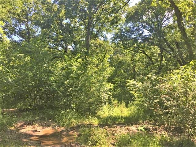 Tbd Shady Woods Drive Quinlan, TX 75474
