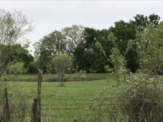 1011 County rd 242 Hico, TX 76457