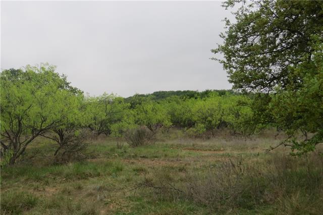 Tbd C4 Capstone Ridge Drive Road Santo, TX 76472