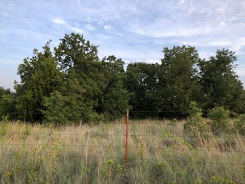 240 Private Road 3541 Paradise, TX 76073