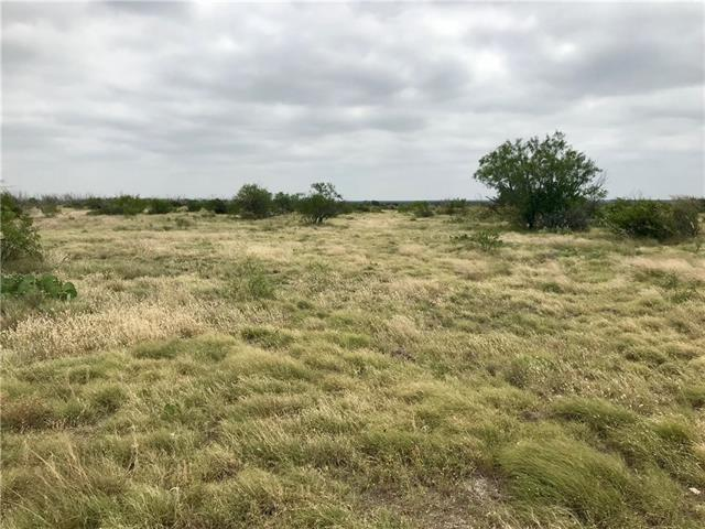 13350 State Highway 163, Ozona, TX 76943
