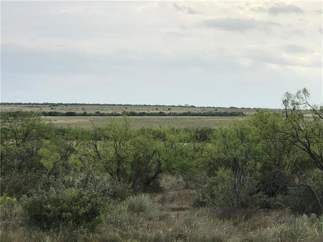 100 Ac County Road 125 Winters, TX 79567