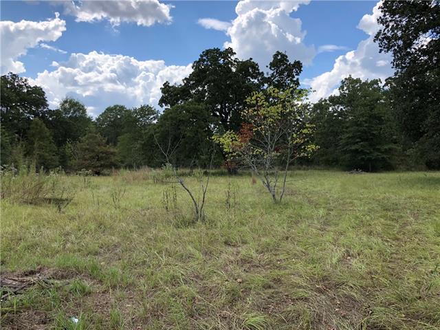 1075 Fm 489 Oakwood, TX 75855